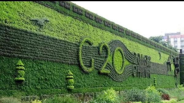 了解一下 植物LOGO墙环保又时尚!
